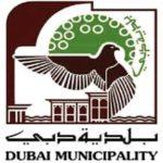dubai municipality careers